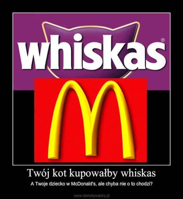 demotywator Whiskas