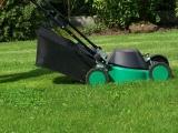 Kosiarki do trawy