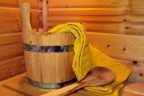 Sauny domowe